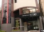 newgaea_yanagawa1